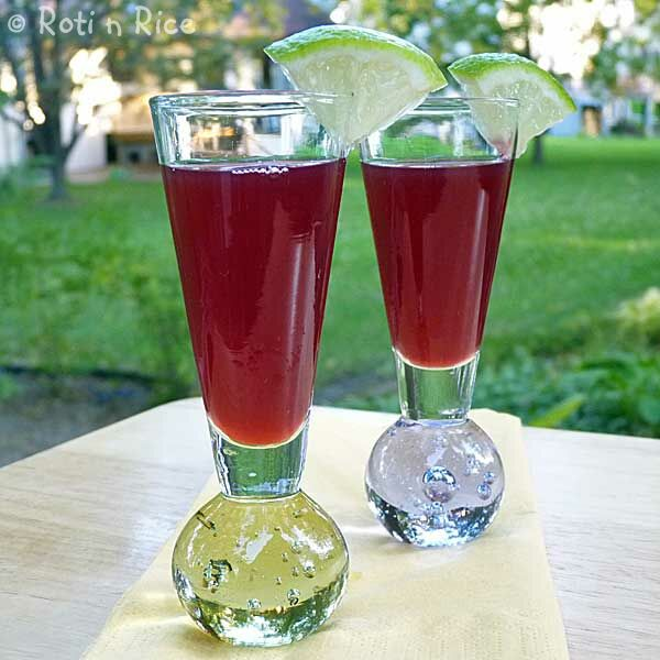 Pomegranate Lime Sling