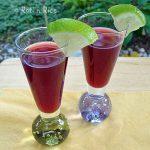 Pomegranate Lime Sling