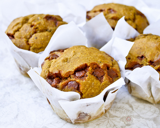Pumpkin Muffins with Cinnamon Chips and Walnuts, perfect for breakfast or snack time. Recipe includes gluten free and traditional versions. | RotiNRice.com