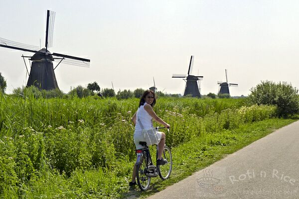 Our Week in Holland
