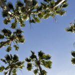 Sunny San Diego – Part I
