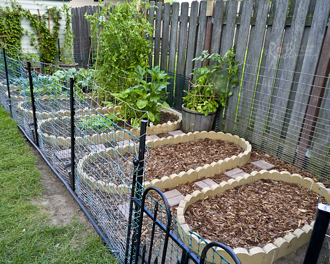 Our Vegetable Garden - Part 2 is an expansion of the existing lot to include 2 more vegetable beds for fall planting of corn and green beans. | Food to gladden the heart at RotiNRice.com